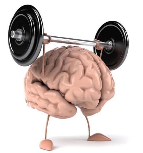 ورزش مغز